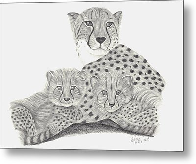 Cheetah And Her Cubs Metal Print