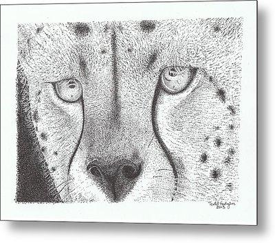 Cheetah Face Metal Print by Todd Hodgins