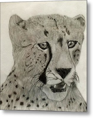 Cheetah II Metal Print
