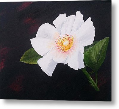 Cherokee Rose Metal Print