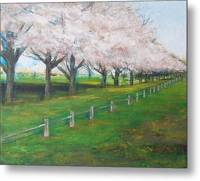 Metal Print featuring the painting Cherry Blossom Christchurch by Jane  See