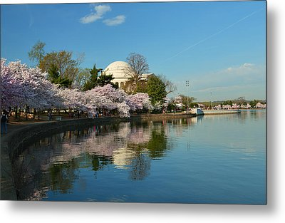 Cherry Blossoms 2013 - 041 Metal Print by Metro DC Photography