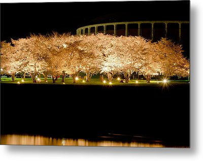 Cherry Blossoms Across The Hocking Metal Print by Shirley Tinkham