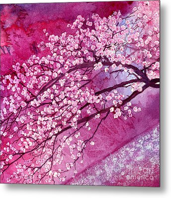 Cherry Blossoms Metal Print by Hailey E Herrera
