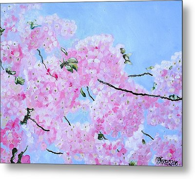 Cherry Blossoms Metal Print by Melissa Torres