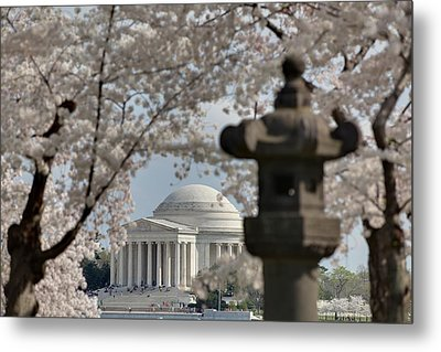 Cherry Blossoms With Jefferson Memorial - Washington Dc - 011326 Metal Print by DC Photographer