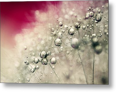Metal Print featuring the photograph Cherry Dandy Drops by Sharon Johnstone