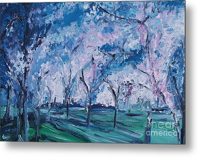 Cherry Trees Impressionism Metal Print by Eric  Schiabor
