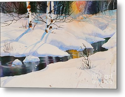 Chester Creek Shadows Metal Print by Teresa Ascone
