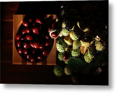 Metal Print featuring the photograph Chestnuts by David Andersen