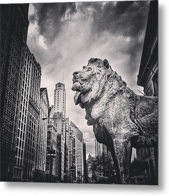 Art Institute Of Chicago Lion Picture Metal Print by Paul Velgos