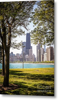 Chicago Skyline And Hancock Building Through Trees Metal Print by Paul Velgos
