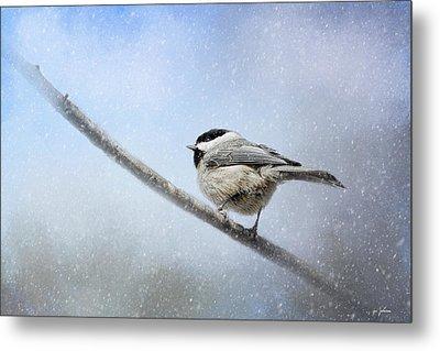 Chickadee In The Snow Metal Print by Jai Johnson