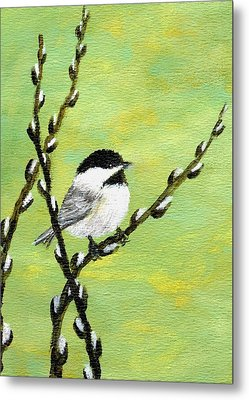 Chickadee On Pussy Willow - Bird 1 Metal Print