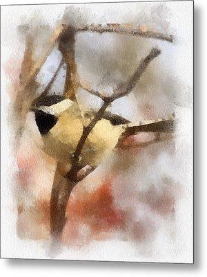 Chickadee Watercolor Metal Print by Kerri Farley