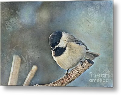 Chickadee With Texture Metal Print