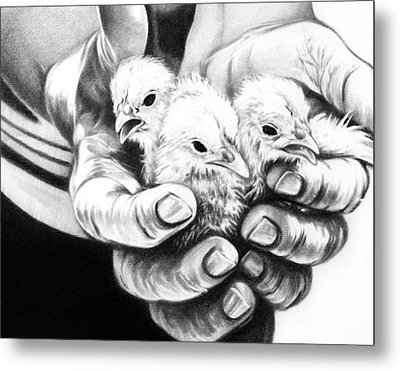 Metal Print featuring the drawing Chickens by Natasha Denger