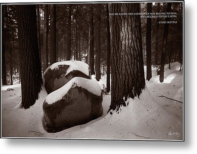 Chief Seattle - Sunlight On A Winter Woods Metal Print