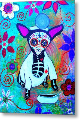 Chihuahua Doctor Metal Print by Pristine Cartera Turkus