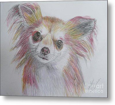 Chihuahua Metal Print by Lyric Lucas