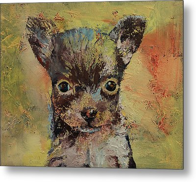 Chihuahua Metal Print by Michael Creese