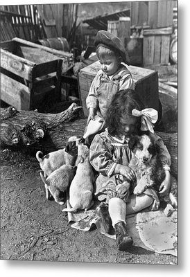 Children On Farm With Puppies Metal Print by Underwood Archives