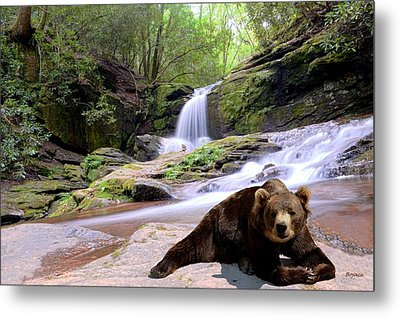 Chillin Bear Metal Print by Bob Jackson