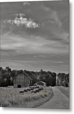 Chillin On A Dirt Road Metal Print by Anthony Thomas