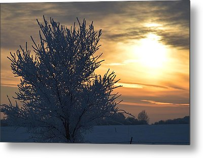 Metal Print featuring the photograph Chilly Sunrise by Dacia Doroff