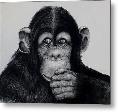 Chimp Metal Print by Jean Cormier
