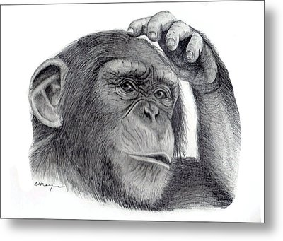 Chimp Metal Print by Mary Mayes