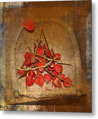 Chinese Lantern Seed Pods Metal Print by Kume Bryant