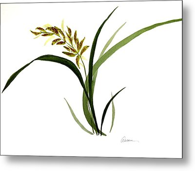 Chinese Wild Orchid #4 Metal Print by Alethea McKee