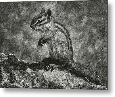 Chipmunk On The Rocks Metal Print by Sandra LaFaut