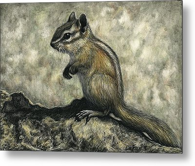 Chipmunk  Metal Print by Sandra LaFaut