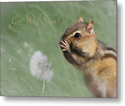 Chippy Get Well Soon Metal Print by Lori Deiter