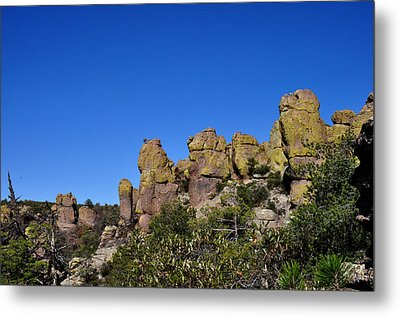 Chiracahua Mountains Metal Print by Diane Lent