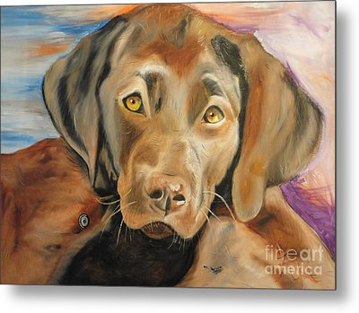 Metal Print featuring the painting Chocolat Labrador Puppy by PainterArtist FIN