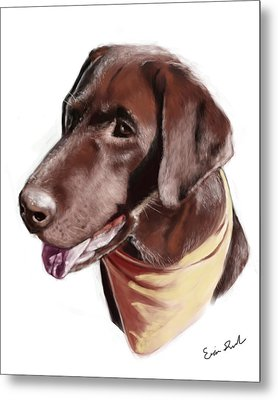 Chocolate Lab Metal Print by Eric Smith