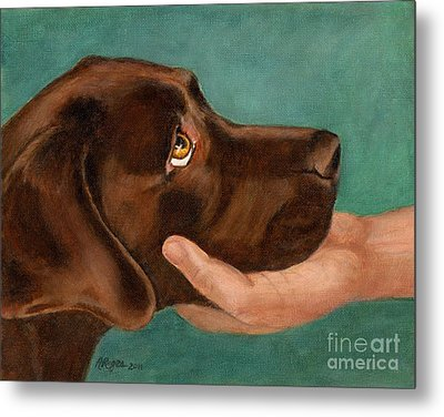Chocolate Lab Head In Hand Metal Print