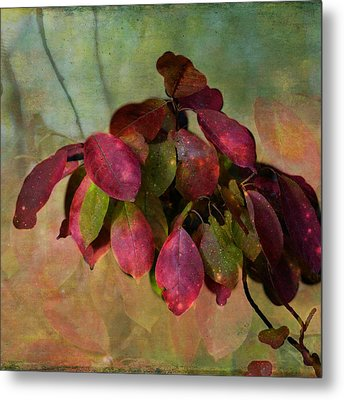 Chokecherry Leaves Metal Print