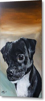 Chowder The Pug Rat Terrier Mix Metal Print by Michelle Iglesias