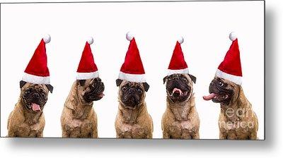 Christmas Caroling Dogs Metal Print