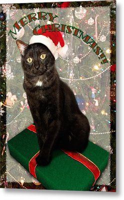 Christmas Cat Metal Print by Adam Romanowicz