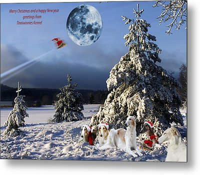 Christmas Greetings From Borzoi Sight-hounds Metal Print by Christian Lagereek