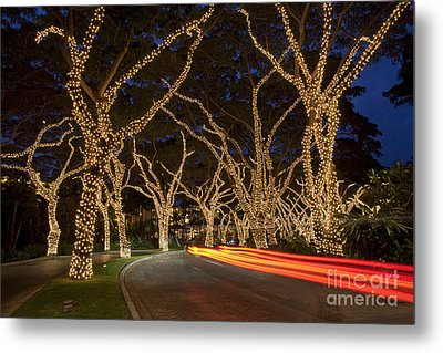 Christmas In Wailea Metal Print