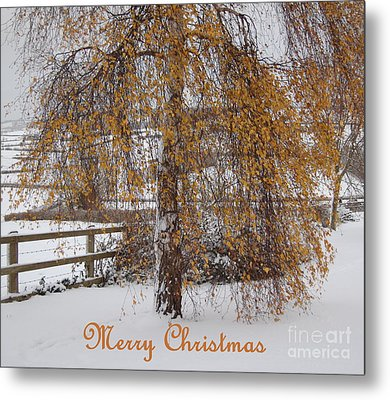 Christmas Is Orange Metal Print by Linda Prewer