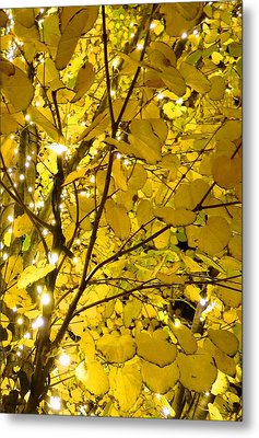 Metal Print featuring the photograph Christmas Lights by Julia Ivanovna Willhite