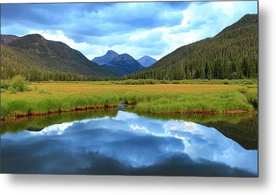 Christmas Meadows In The Uinta Mountains. Metal Print