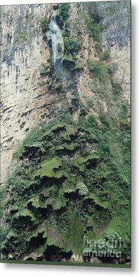 Christmas Tree Waterfall Metal Print